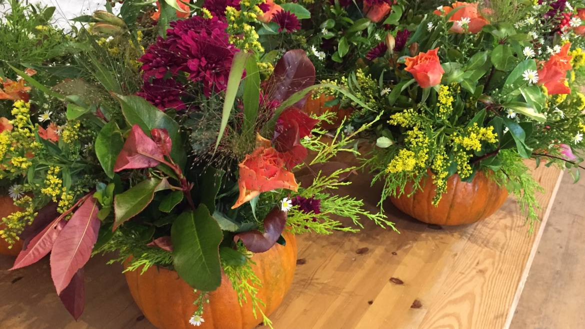 Coming Soon – Autumnal Floral Workshop